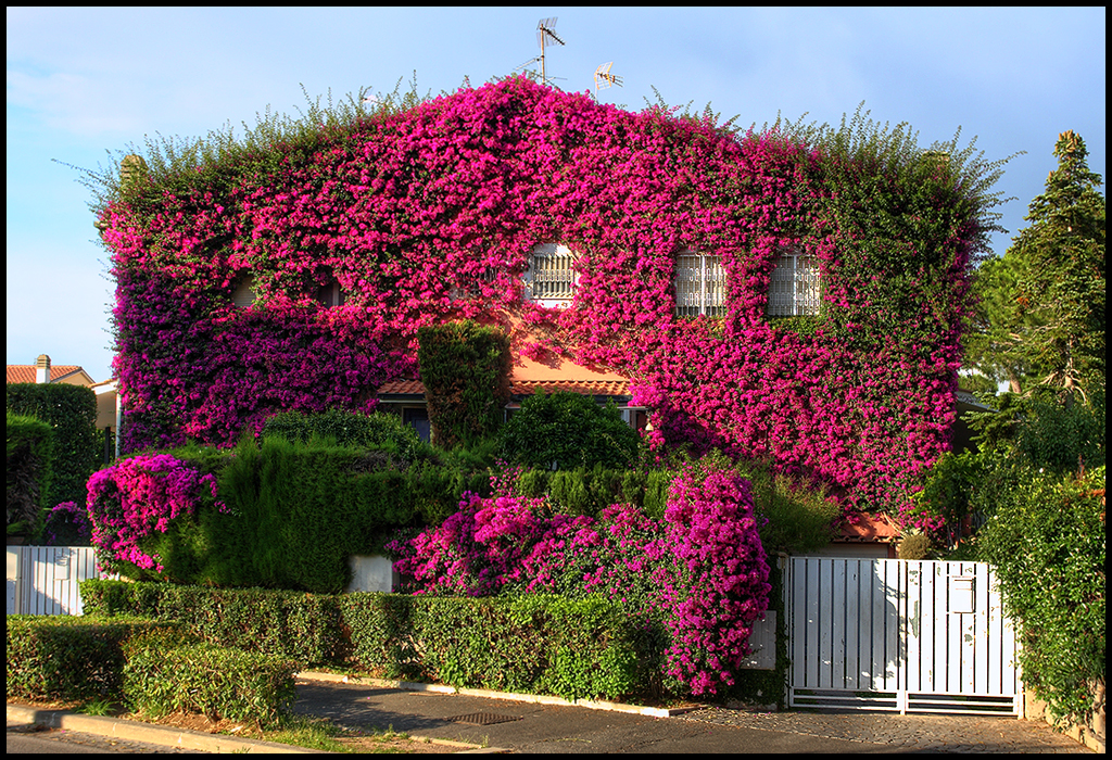 Villa Fiorito Casa Vacanze Mondello