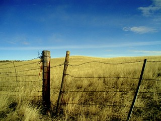 Fence on the Prarie | by michael24199
