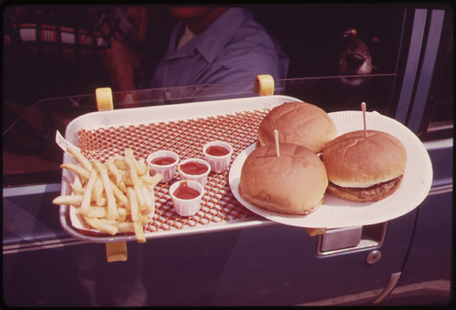 Lunch in the Car-Hylan Boulevard, Staten Island 06/1973 | by The U.S. National Archives