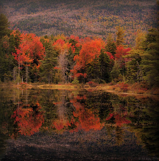 Fall Colors in New England | by JA|Foto