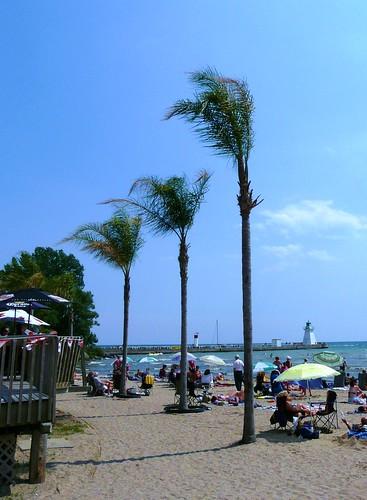 Port Dover Beach Palm Trees