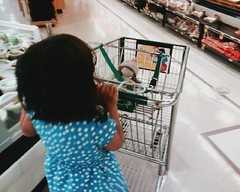 Shopping Cart | by edenpictures