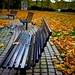 Autumn Benches