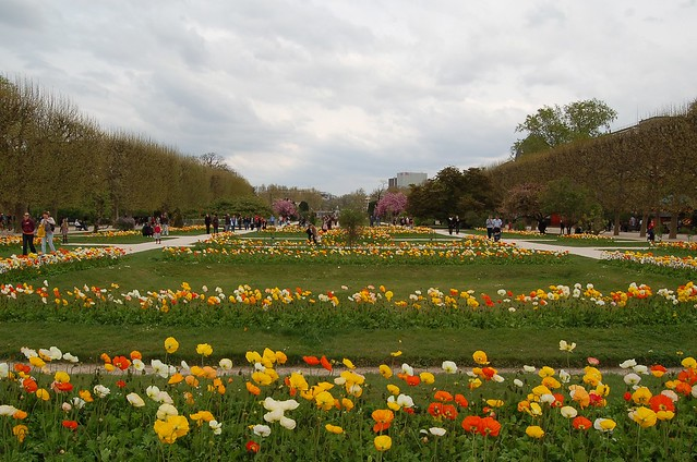 Photo for Jardin plantes paris