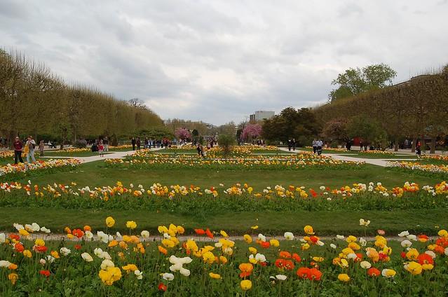 Photo for Plantes paris