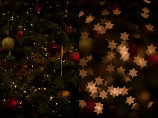 Bokeh Masters Kit Test: Christmas tree before and after | by bhautik_joshi