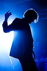 Meredith Music Festival 09 - Jarvis Cocker | by Aunty Meredith