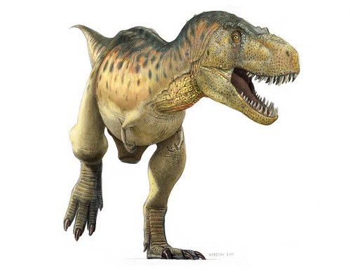 tyrannosaurus color | by paul heaston