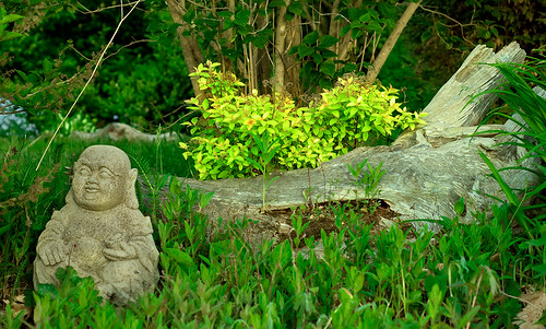 Garden Budda | by cloud2013