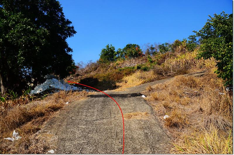 斗六山稜線岔路