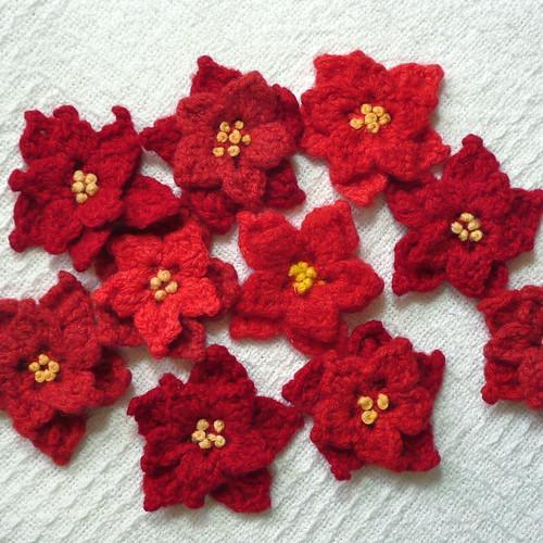 Poinsettia Pins | Flickr - Photo Sharing!