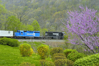 Springtime in the Alleghenies, 2 Norfolk Southern SD40-2 locomotives assist a long container train as it climbs the grade from Altoona and rounds Horseshoe Curve on ex-Pennsylvania Railroad, ex-Penn Central, ex-Conrail trackage, Pennsylvania, May, 2004 | by Ivan S. Abrams