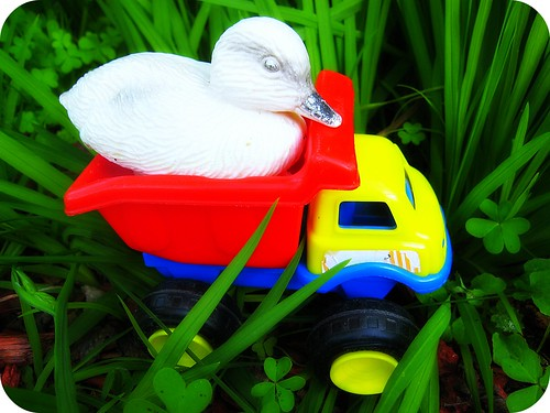 Duck truck | by carnivalbrite