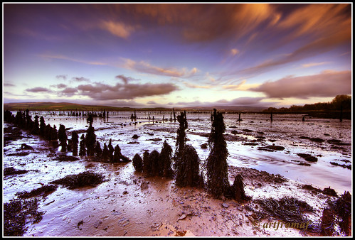 Timber Pond Clyde Estuary. | by artfromaf