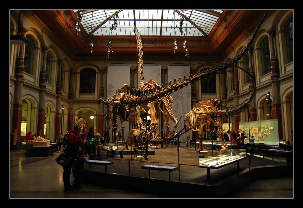 stor pik i røven museer i københavn gratis