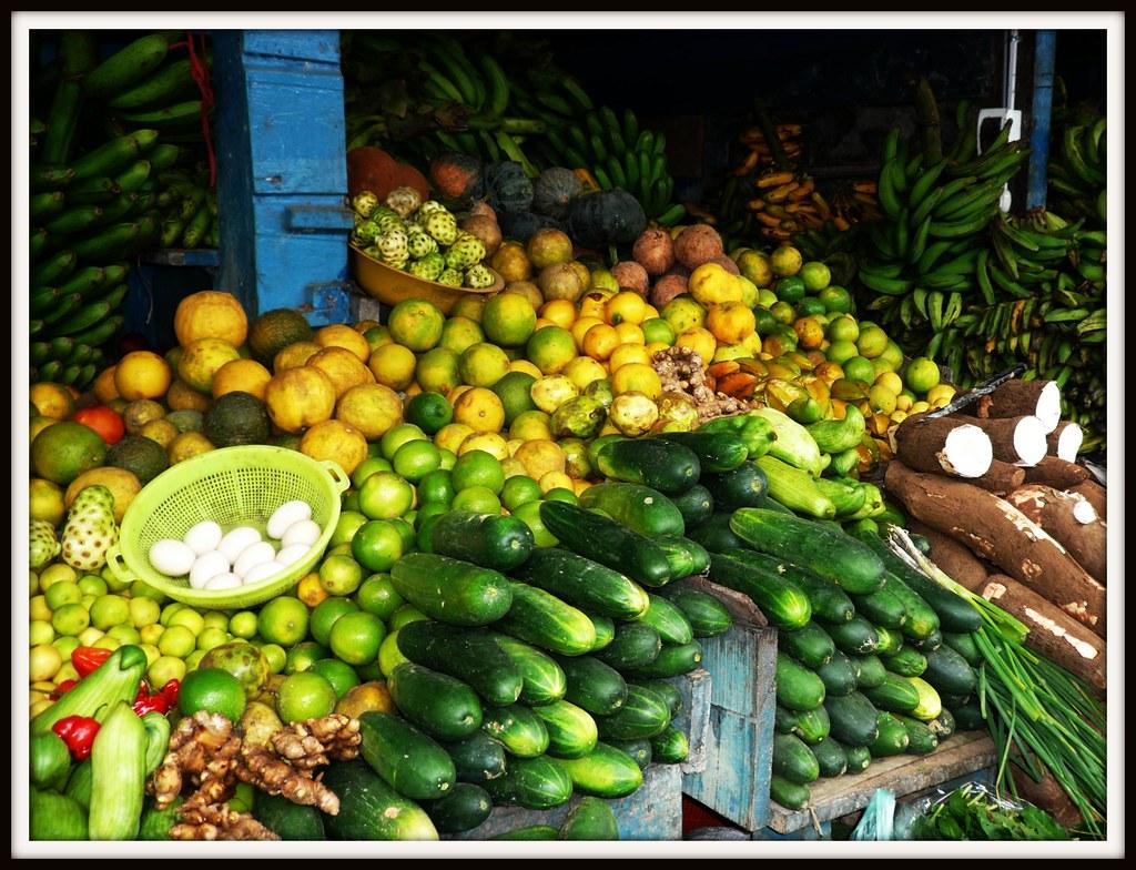 Rainforest foods   DeanaMorrison   Flickr