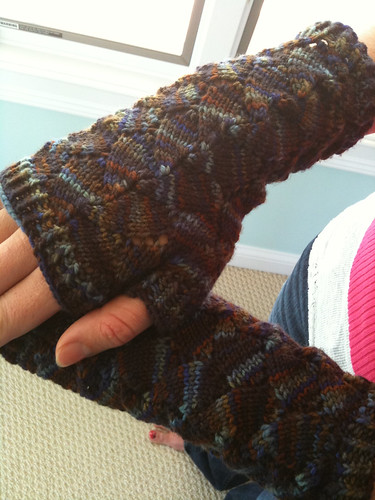 Finished butterfly mitts | by AllisonSSYC