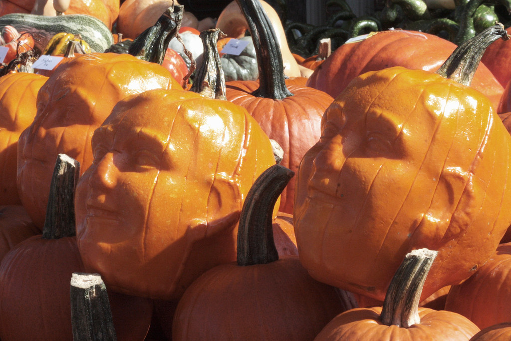 Pumpkin Faces These Pumpkins Were Grown In Molds And