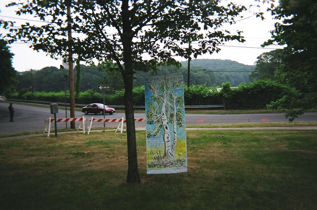 urban forest banners 17 joann moran flickr