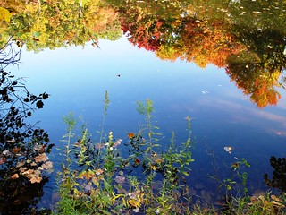 GFS pond - fall reflection | by karma (Karen)