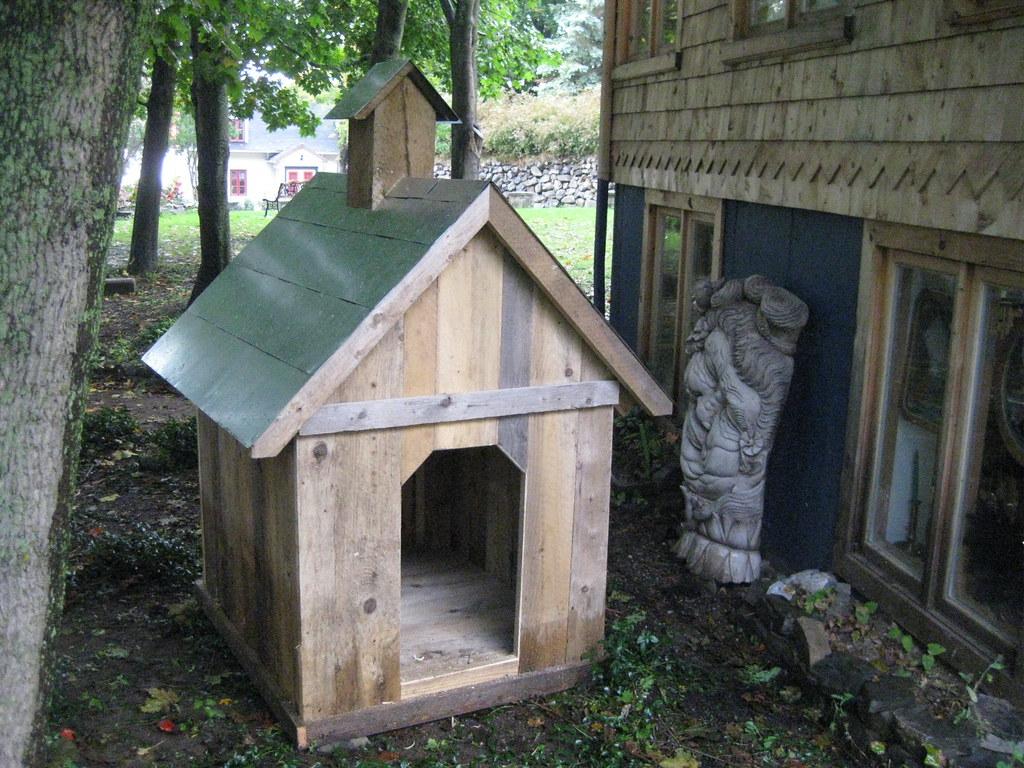 cave vin niche chien arbre volution flickr. Black Bedroom Furniture Sets. Home Design Ideas