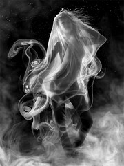 Tara (तारा) - Smoke Series | by Ethan T. Allen