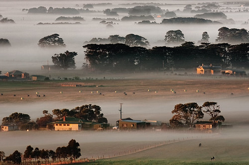 Low mist on the Western Plains | by aycee_2000
