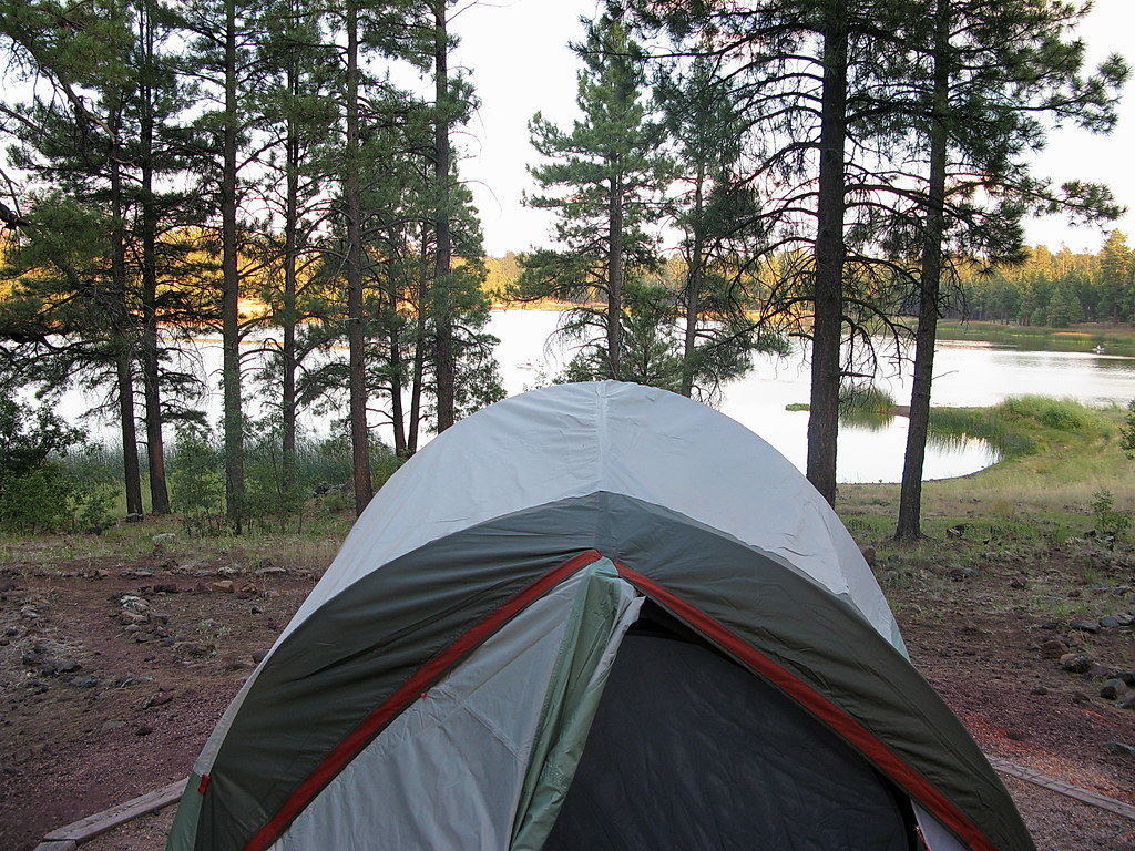 White horse lake campsite c58 kaibab national forest for Fishing in williams az