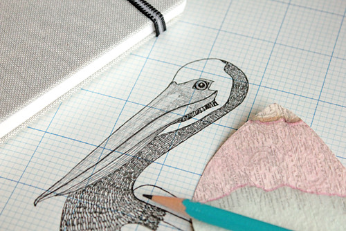 Pelican Sketch | by Geninne