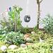 Mini garden close up