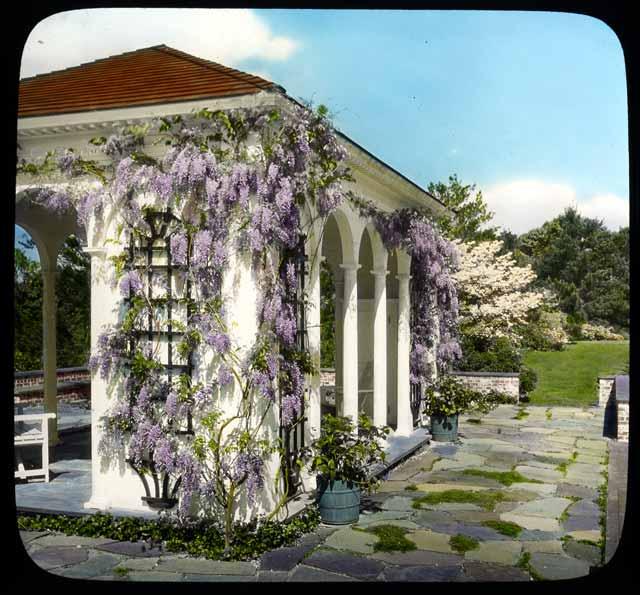 Davis garden slide creator davis john w mrs north for American garden company