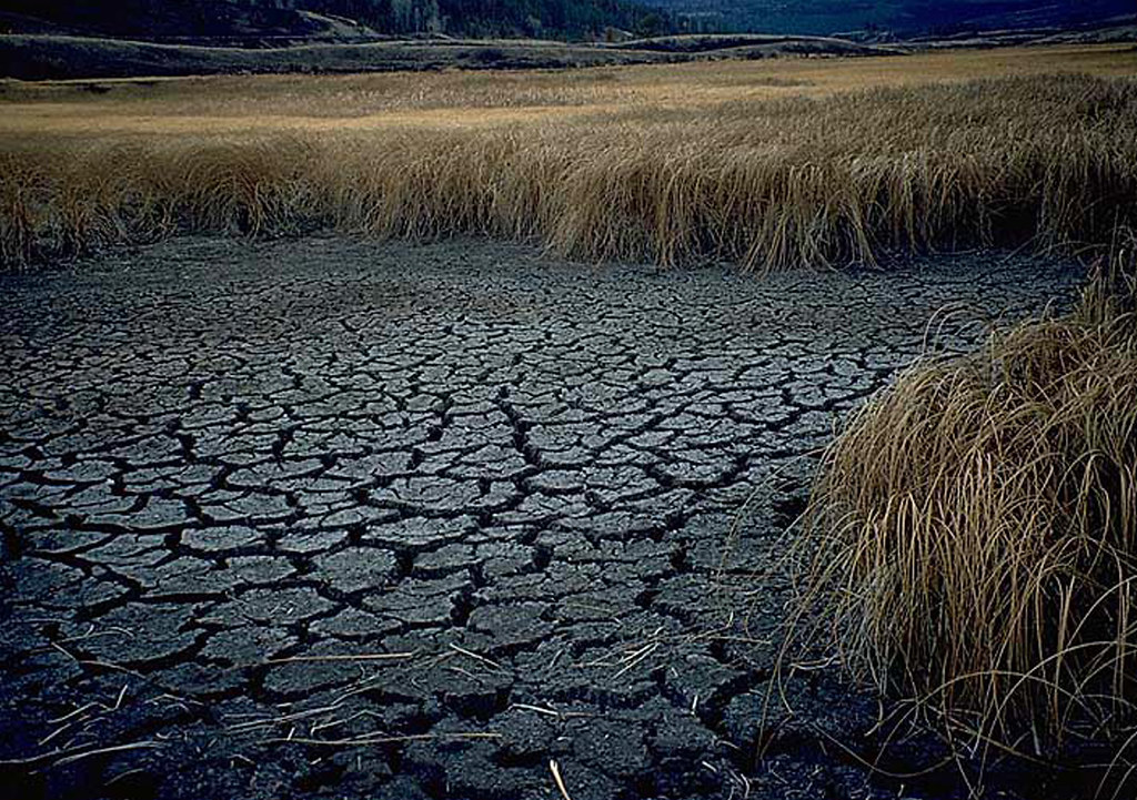 Image result for Australia drought images pics
