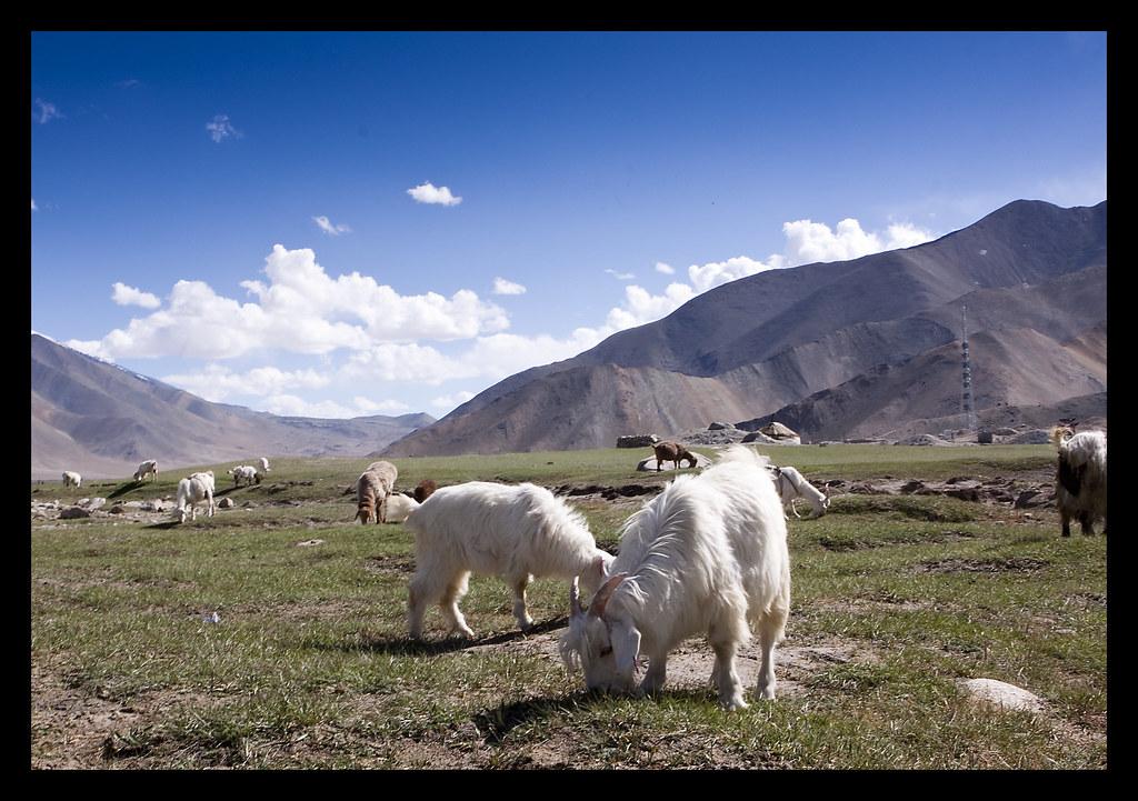 Karakul Lake Xinjiang Karakoram Highway Karakul Lake