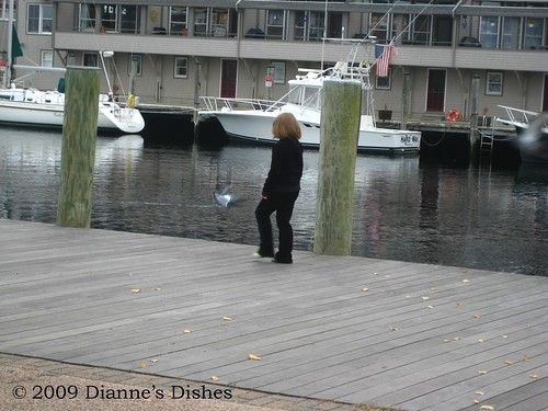 Mystic CT | by Dianne's Dishes