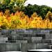 04 Monumento víctimas Holocausto Arq. Peter Eisenman 26591