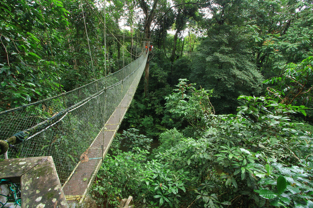 Holiday Destinations for Australians - Gunung National Park Malaysia