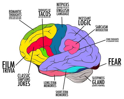 Teen psychological development