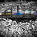 Bellagio Chrismas train motion selective color