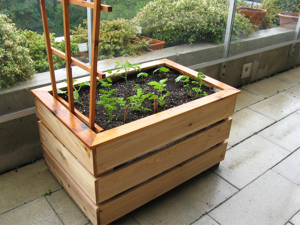 Delightful How To Build A Vegetable Garden Box #1: 3695284841_b8e2de8db2_b.jpg