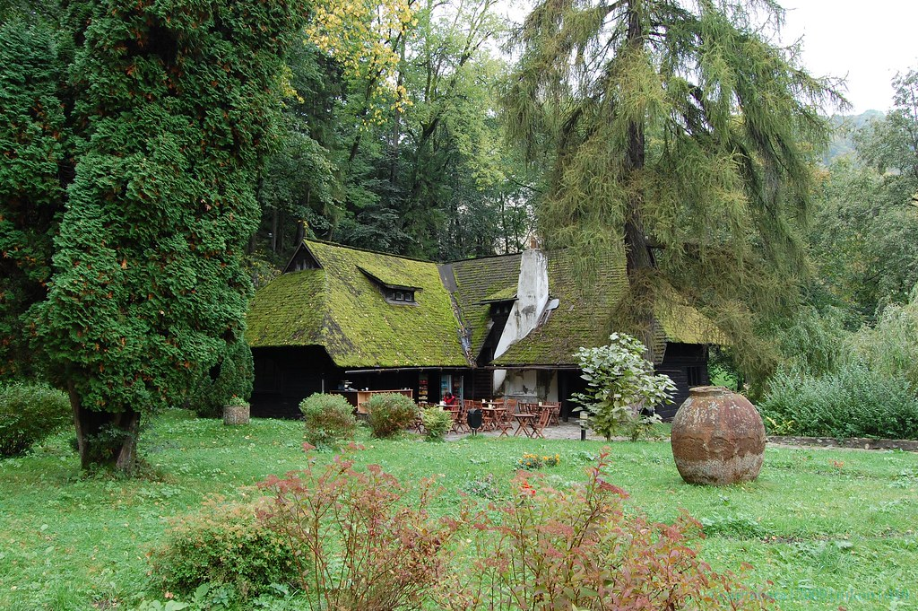 House With Moss Roof Near The Bran Castle | Capreoara K | Flickr
