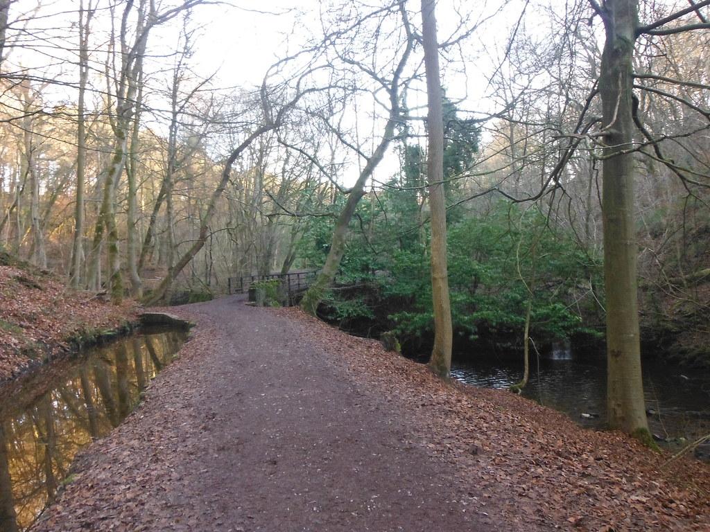 Skipton Wood 2