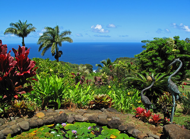 The View From The Pond | Taken at the Garden of Eden / Maui … | Flickr
