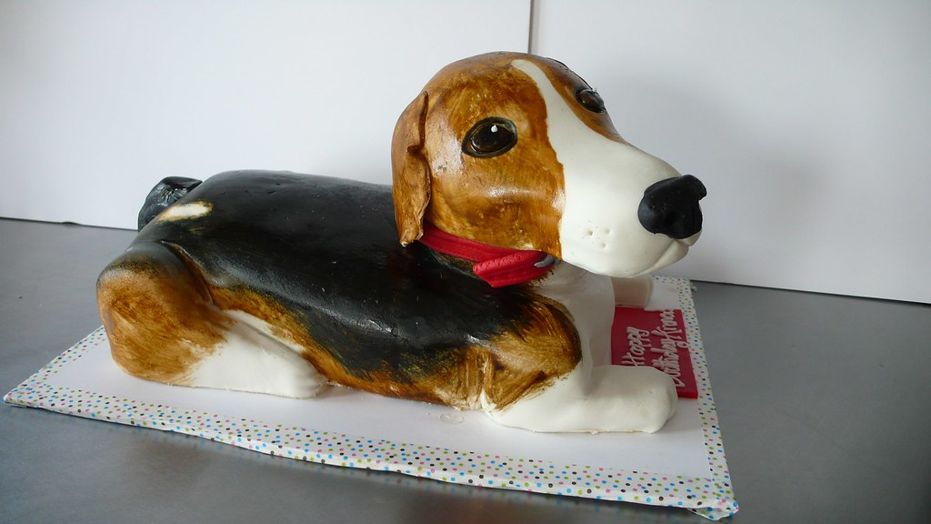 3d Beagle Cake My First 3d Dog Cake I Love Dogs I Love