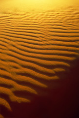 Sand Patterns - background #2