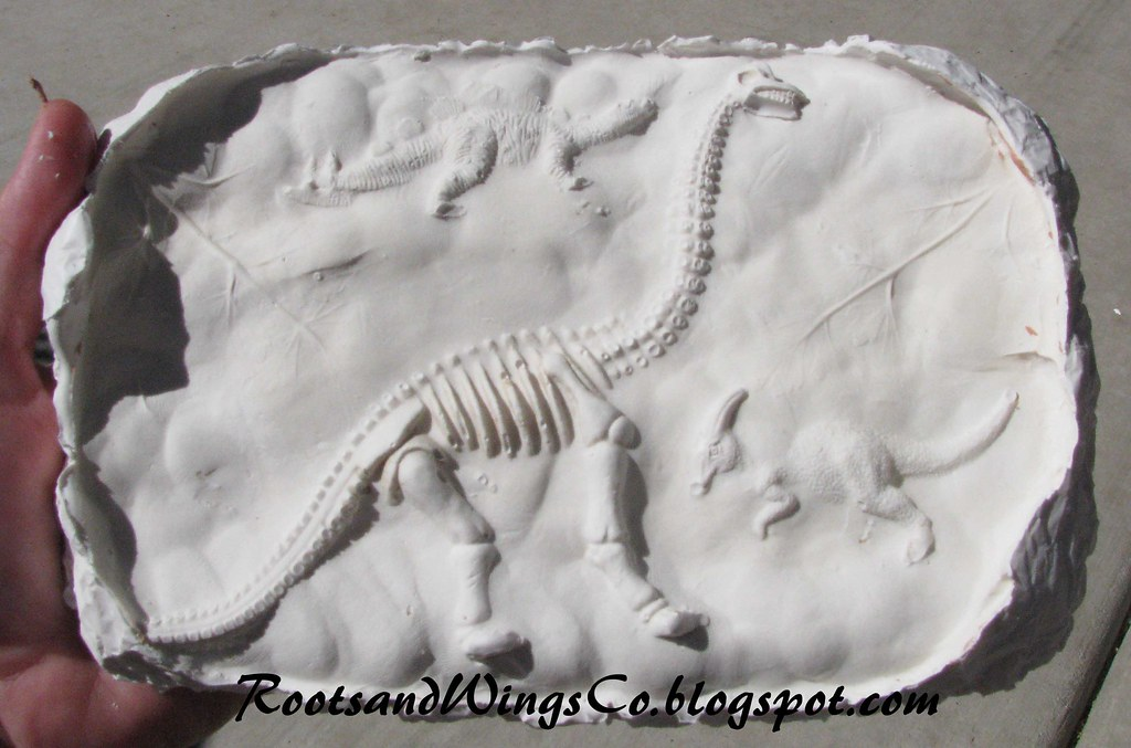 make your own fossils some clay plastic dinosaurs and pla flickr