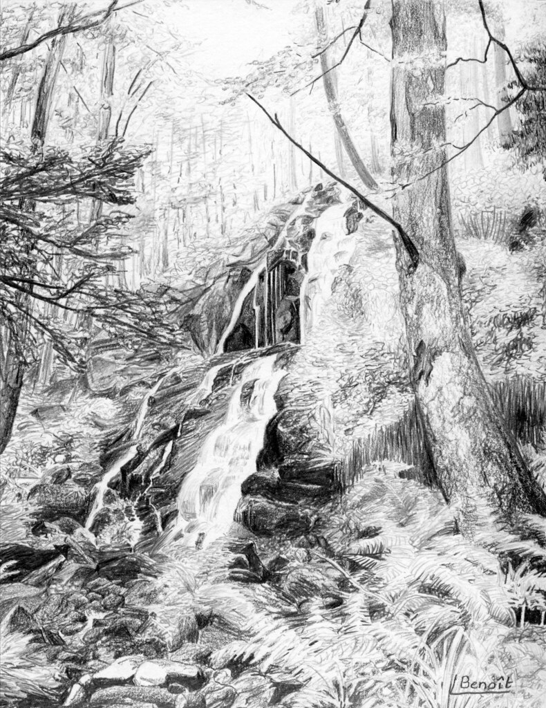 Cascade en for t dessin au crayon sur canson 16 x 21 cm beno t simple escargot flickr - Dessin de foret ...