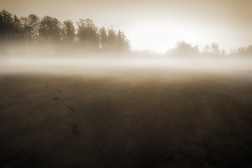Footsteps In the Mist | by Mikko Lagerstedt