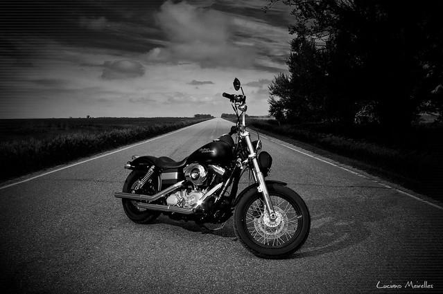Brothers Harley Davidson