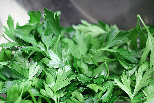 flat leaf parsley | by David Lebovitz