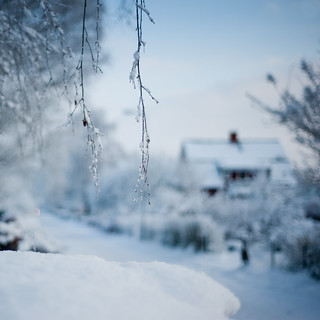 Winter bokeh | by Karin Crona